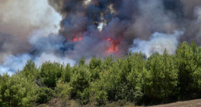 Ηλεία πυρκαγιά